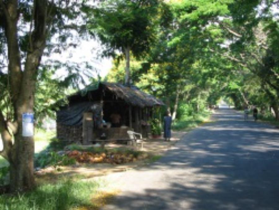 Landstraße in Sri Lanka